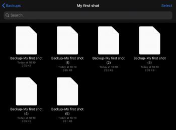 Backups list